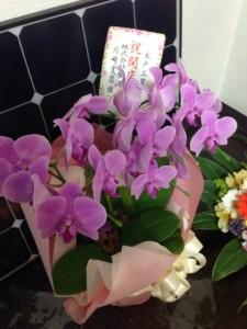 お花 (5)
